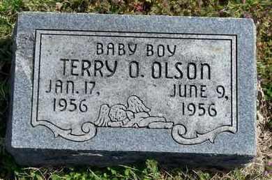 OLSON, TERRY O - Labette County, Kansas   TERRY O OLSON - Kansas Gravestone Photos