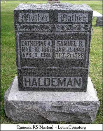 HALDEMAN, SAMUEL BENDER - Marion County, Kansas | SAMUEL BENDER HALDEMAN - Kansas Gravestone Photos