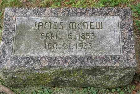 MCNEW, JAMES - Marshall County, Kansas | JAMES MCNEW - Kansas Gravestone Photos