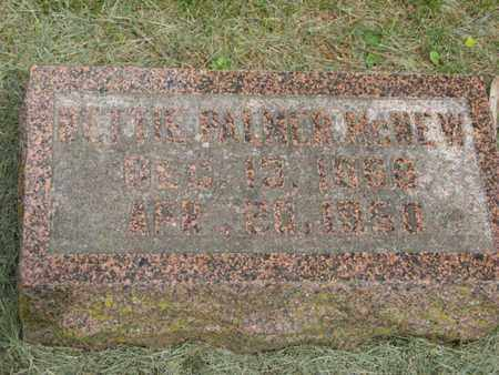 PALMER MCNEW, NETTIE - Marshall County, Kansas | NETTIE PALMER MCNEW - Kansas Gravestone Photos