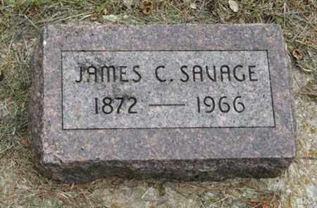 SAVAGE, JAMES C - Marshall County, Kansas | JAMES C SAVAGE - Kansas Gravestone Photos