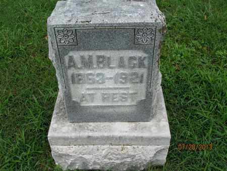 BLACK, A M - Montgomery County, Kansas | A M BLACK - Kansas Gravestone Photos