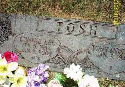 TOSH, CONNIE LEE - Montgomery County, Kansas | CONNIE LEE TOSH - Kansas Gravestone Photos