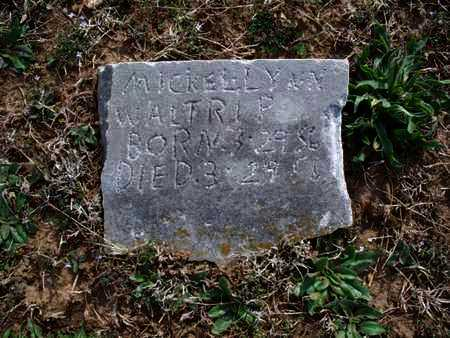 WALTRIP, MICKEL LYNN - Montgomery County, Kansas | MICKEL LYNN WALTRIP - Kansas Gravestone Photos