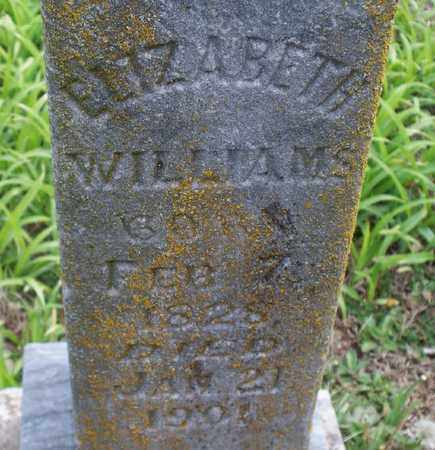 WILLIAMS, ELIZABETH - Montgomery County, Kansas   ELIZABETH WILLIAMS - Kansas Gravestone Photos
