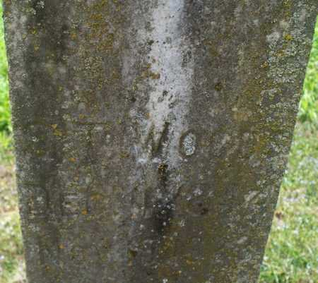 WOODS, S T - Montgomery County, Kansas   S T WOODS - Kansas Gravestone Photos