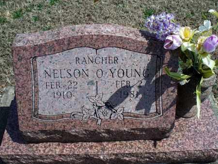 YOUNG, NELSON O - Montgomery County, Kansas | NELSON O YOUNG - Kansas Gravestone Photos