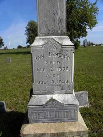 BUSHNELL BENEDICT, ANN - Nemaha County, Kansas | ANN BUSHNELL BENEDICT - Kansas Gravestone Photos