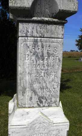 BENEDICT, ARCHIE S - Nemaha County, Kansas | ARCHIE S BENEDICT - Kansas Gravestone Photos