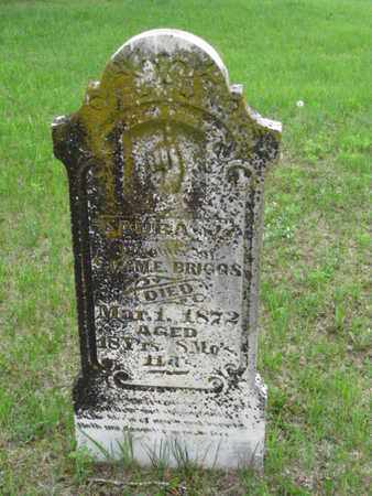 BRIGGS, LAURA J - Nemaha County, Kansas   LAURA J BRIGGS - Kansas Gravestone Photos