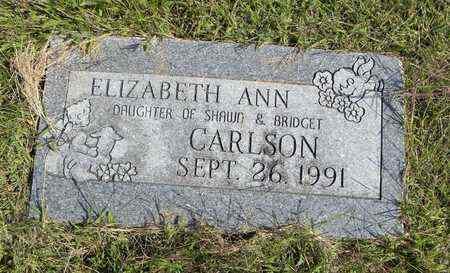 CARLSON, ELIZABETH ANN - Nemaha County, Kansas | ELIZABETH ANN CARLSON - Kansas Gravestone Photos