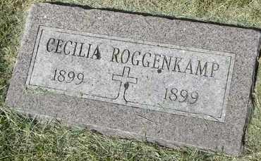 ROGGENKAMP, CECELIA - Nemaha County, Kansas   CECELIA ROGGENKAMP - Kansas Gravestone Photos