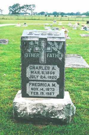 BUSSE, CHARLES A - Neosho County, Kansas | CHARLES A BUSSE - Kansas Gravestone Photos