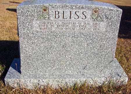 BLISS, FAMILY STONE - Osborne County, Kansas | FAMILY STONE BLISS - Kansas Gravestone Photos