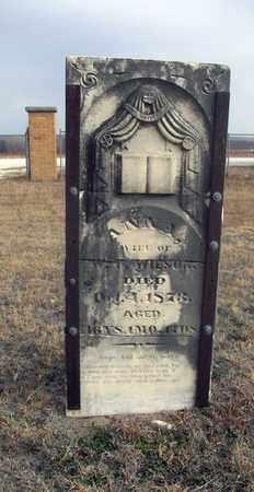 WILSON, ANNA - Osborne County, Kansas   ANNA WILSON - Kansas Gravestone Photos