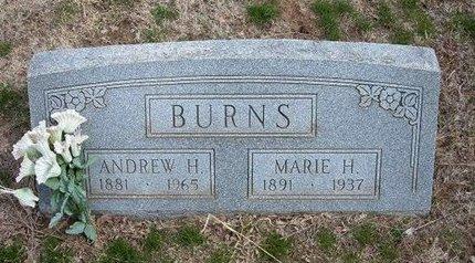 BURNS, ANDREW H - Pratt County, Kansas | ANDREW H BURNS - Kansas Gravestone Photos