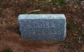 DAVIS, LOUISA - Pratt County, Kansas | LOUISA DAVIS - Kansas Gravestone Photos