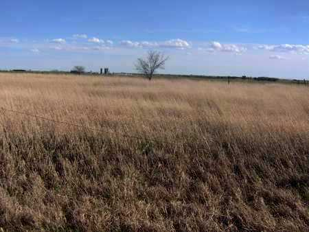 *OVERVIEW, LUDWIICK CEMETERY - Pratt County, Kansas | LUDWIICK CEMETERY *OVERVIEW - Kansas Gravestone Photos