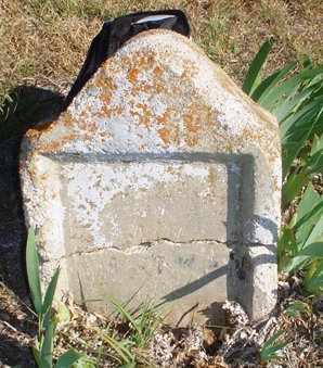 RICHMAN, L C - Rawlins County, Kansas | L C RICHMAN - Kansas Gravestone Photos
