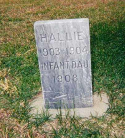 PORTER, HALLIE - Republic County, Kansas | HALLIE PORTER - Kansas Gravestone Photos