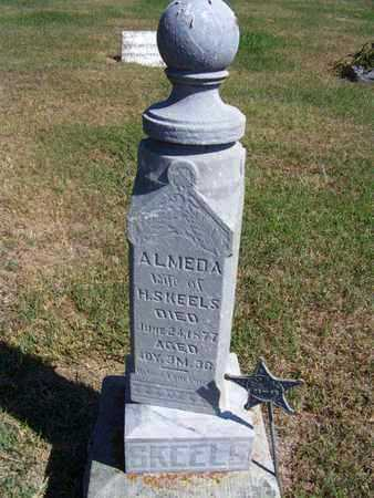 SKEELS, ALMEDA - Republic County, Kansas   ALMEDA SKEELS - Kansas Gravestone Photos