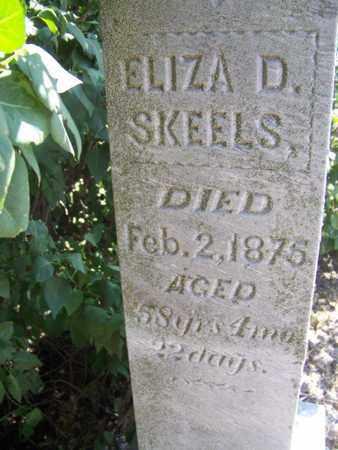 SKEELS, ELIZA D - Republic County, Kansas | ELIZA D SKEELS - Kansas Gravestone Photos