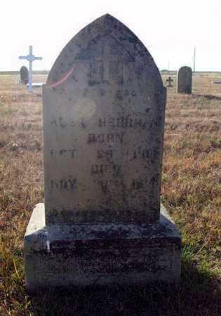 HERRMAN, ALEX - Rush County, Kansas   ALEX HERRMAN - Kansas Gravestone Photos