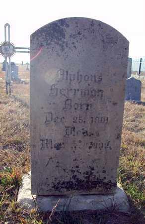 HERRMAN, ALPHONS - Rush County, Kansas   ALPHONS HERRMAN - Kansas Gravestone Photos