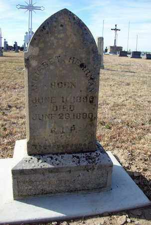 HERRMAN, ANLISBET - Rush County, Kansas   ANLISBET HERRMAN - Kansas Gravestone Photos
