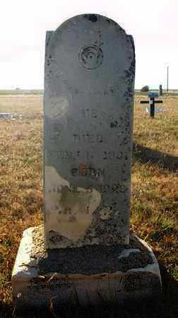 HERRMAN, ANNA - Rush County, Kansas   ANNA HERRMAN - Kansas Gravestone Photos