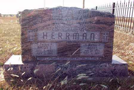 KREUTZER HERRMAN, AGNES - Rush County, Kansas | AGNES KREUTZER HERRMAN - Kansas Gravestone Photos