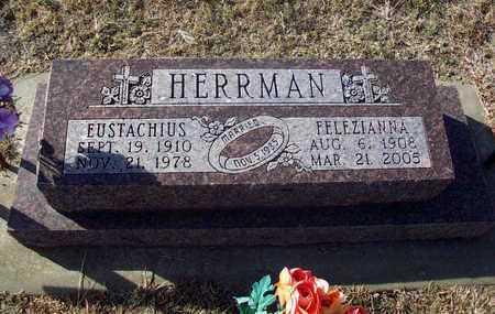 HERRMAN, FELEZIANNA - Rush County, Kansas | FELEZIANNA HERRMAN - Kansas Gravestone Photos