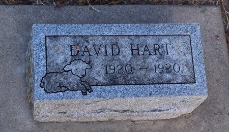 HART, DAVID - Sedgwick County, Kansas | DAVID HART - Kansas Gravestone Photos