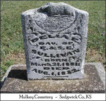 SULLIVAN, DELIA E - Sedgwick County, Kansas   DELIA E SULLIVAN - Kansas Gravestone Photos