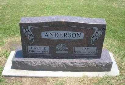 ANDERSON, FAY - Stevens County, Kansas | FAY ANDERSON - Kansas Gravestone Photos