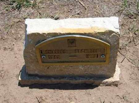 BECHTEL, CHARLES - Stevens County, Kansas   CHARLES BECHTEL - Kansas Gravestone Photos