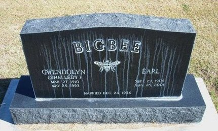BIGBEE, EARL - Stevens County, Kansas | EARL BIGBEE - Kansas Gravestone Photos