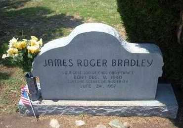BRADLEY, JAMES ROGER - Stevens County, Kansas | JAMES ROGER BRADLEY - Kansas Gravestone Photos