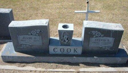COOK, SYLVIA A - Stevens County, Kansas | SYLVIA A COOK - Kansas Gravestone Photos