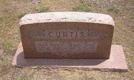 CURTIS, ROY JOHN - Stevens County, Kansas | ROY JOHN CURTIS - Kansas Gravestone Photos