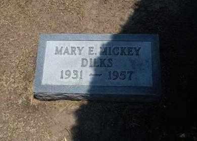 DILKS, MARY ELLEN - Stevens County, Kansas | MARY ELLEN DILKS - Kansas Gravestone Photos