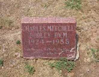DUDLEY, CHARLES MITCHELL - Stevens County, Kansas | CHARLES MITCHELL DUDLEY - Kansas Gravestone Photos