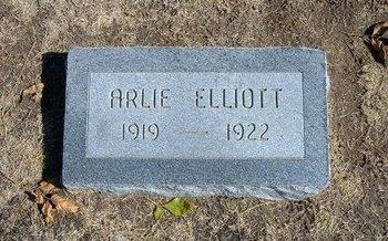 ELLIOTT, ARLIE - Stevens County, Kansas | ARLIE ELLIOTT - Kansas Gravestone Photos