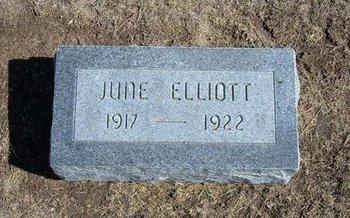 ELLIOTT, JUNE - Stevens County, Kansas   JUNE ELLIOTT - Kansas Gravestone Photos