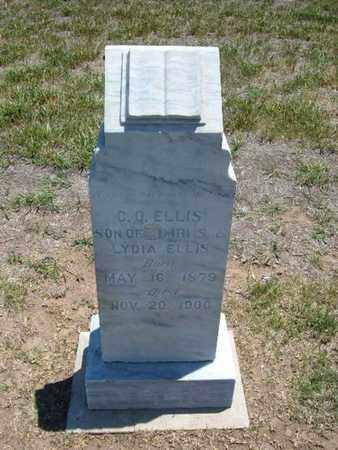 ELLIS, C O - Stevens County, Kansas | C O ELLIS - Kansas Gravestone Photos
