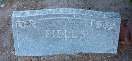 FIELDS, FAMILY STONE - Stevens County, Kansas   FAMILY STONE FIELDS - Kansas Gravestone Photos
