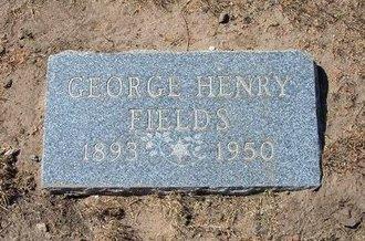 FIELDS, GEORGE HENRY - Stevens County, Kansas | GEORGE HENRY FIELDS - Kansas Gravestone Photos
