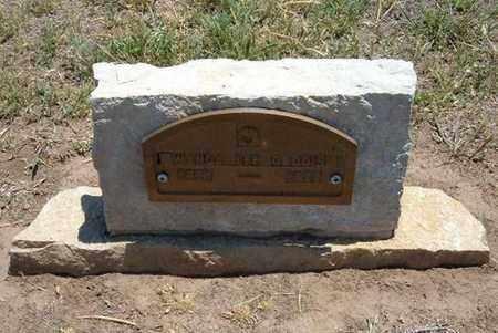 GADDIS, WANDA LEE - Stevens County, Kansas | WANDA LEE GADDIS - Kansas Gravestone Photos