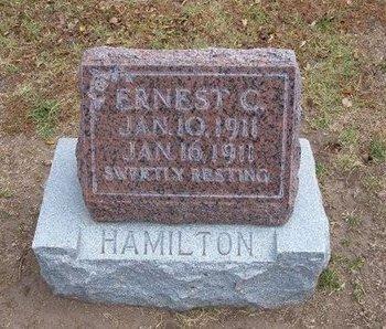 HAMILTON, ERNEST C - Stevens County, Kansas | ERNEST C HAMILTON - Kansas Gravestone Photos
