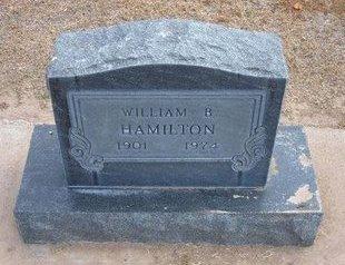HAMILTON, WILLIAM B - Stevens County, Kansas | WILLIAM B HAMILTON - Kansas Gravestone Photos